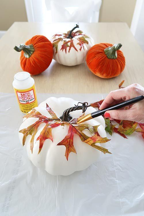 a white pumpkin with colorful fall leaves attached is a nice and simple fall decoration