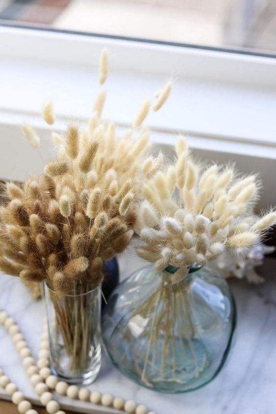 dried bunny tail arrangements in glass vases are a great all-natural decoration for the fall