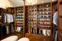 if you hae a walk-in closet you don't need to bother with anything but open shelves
