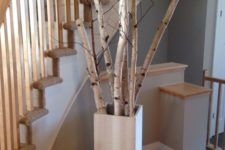 a tall square concrete vase with birch branches is a cool and fresh idea to decorate any space giving it a natural touch