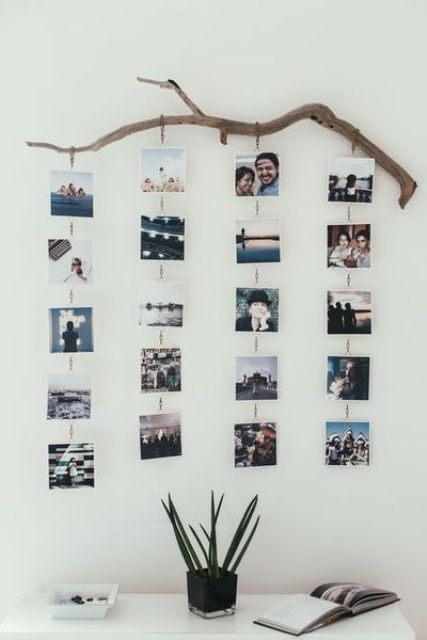 a tree branch with chains of photos hanging on it   it's a cool photo holder that can be made in no time