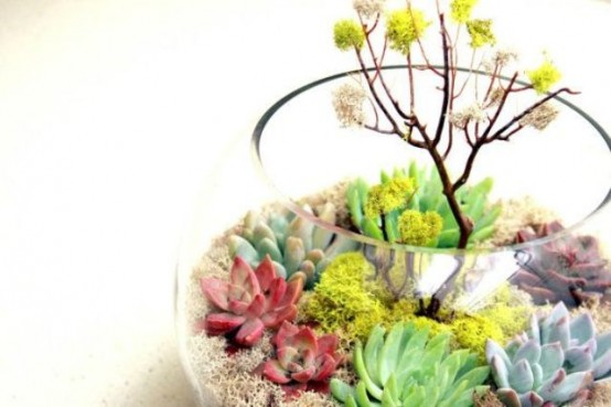 A spring terrarium to grow succulents indoors (via digsdigs)