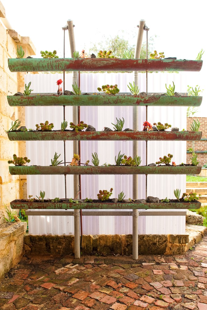 DIY gutter vertical garden full of succulents