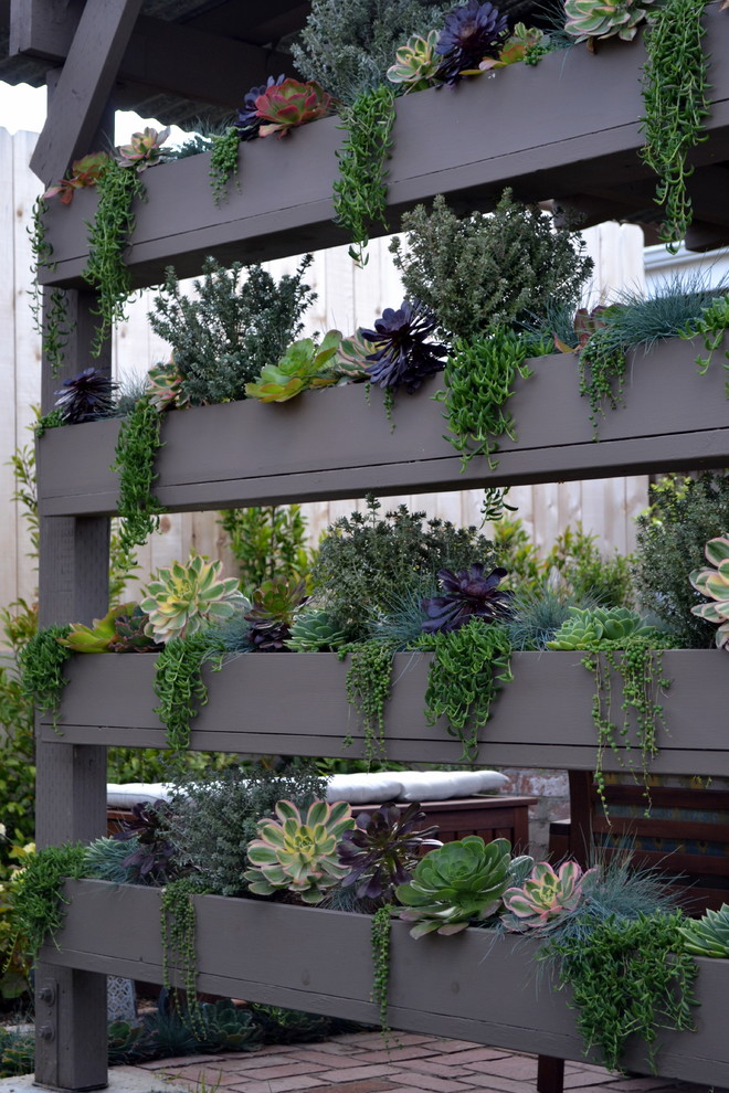 DIY vertical succulent wall