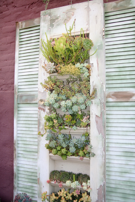 as always old shutters could become a fully functional outdoor container for plants