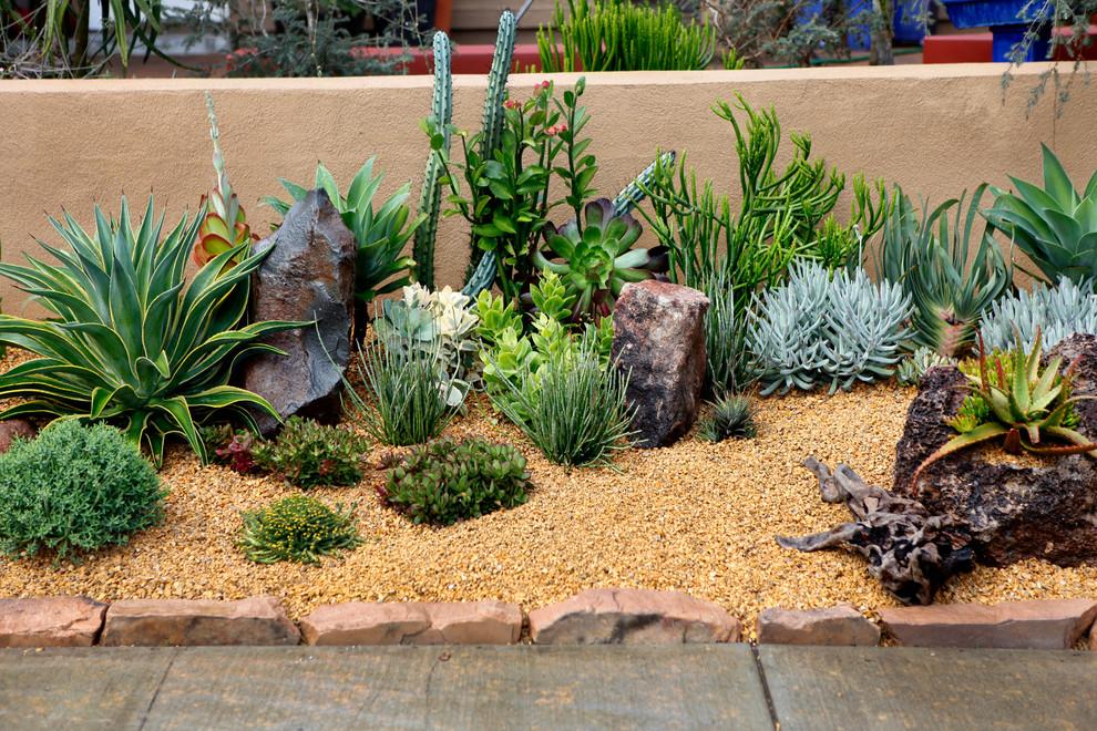 cool frontyard landscape full of fat plants