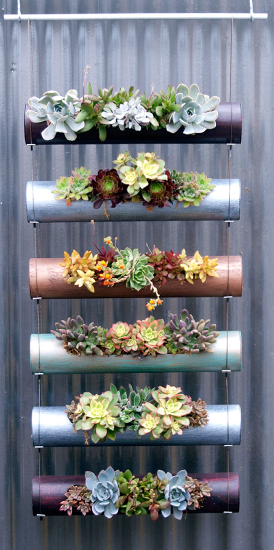 diy succulent vertical garden made of standard PVC pipes
