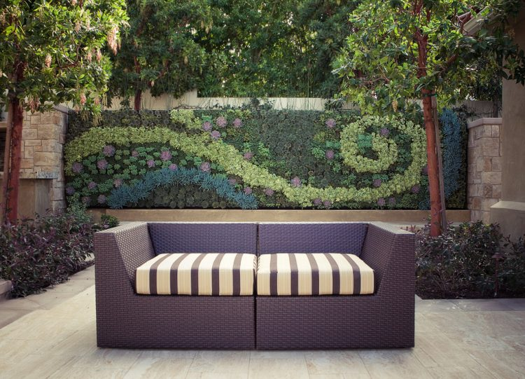 even a whole fence could be covered with succulents to act as a super stylish vertical garden