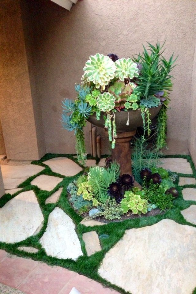 it is quite easy to create beautiful succulent arrangments in old fountains