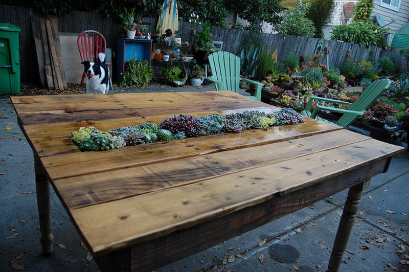little succulent garden that is mounted right in a diy pallet table