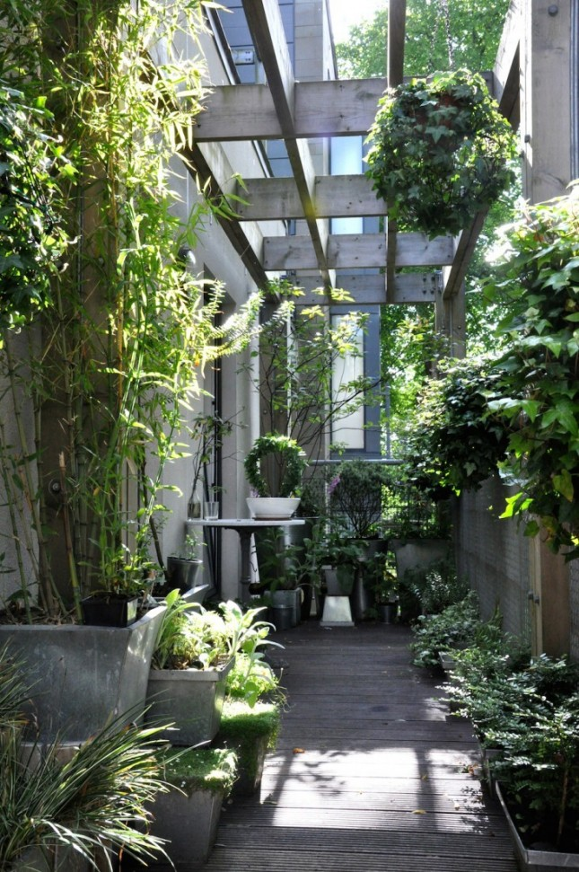 super tiny garden with trees and shrubs in planters - Small Garden Ideas Uk