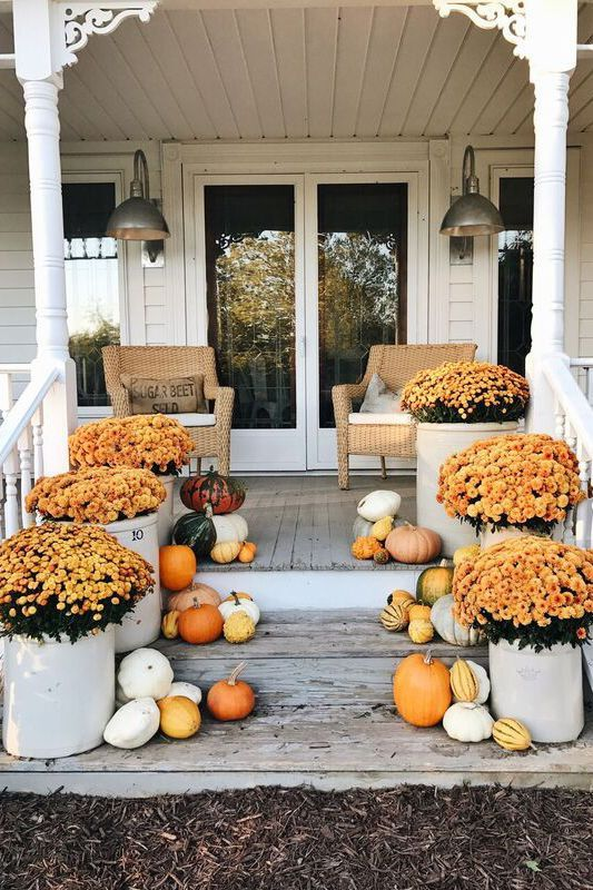 a colorful and natural fall porch with potted orange blooms in pots and natural pumpkins and gourds