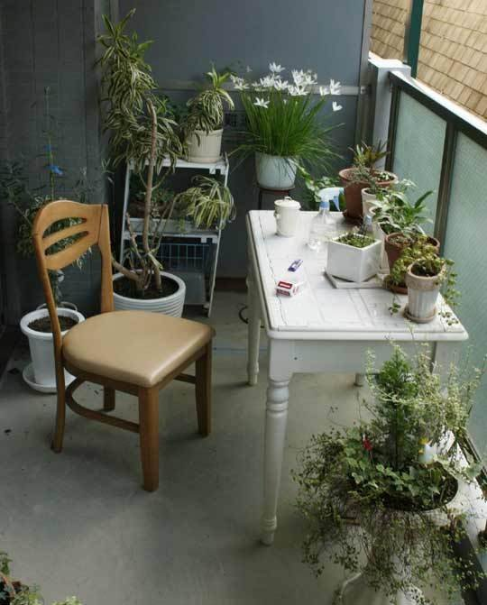 a potting station is a must for a small balcony garden