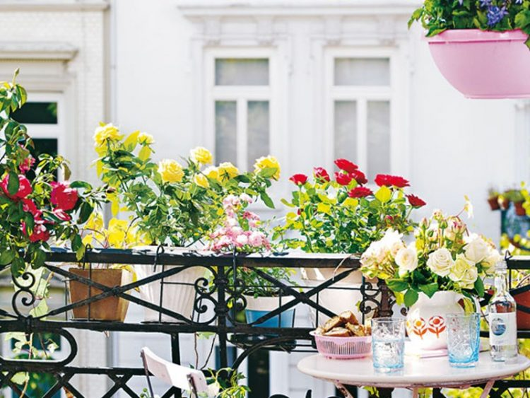 hang flower pots on the railing as a space saving solution