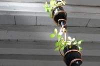 Don't throw away all those wine bottles you have. They could become a nice solution for vertical gardening.