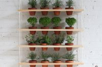 Hanging herb garden ideas always amaze me. In this case – it's a great addition to a modern interior.