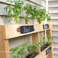 Using a pallet mean your herb garden won't cost you a penny! (via thepinklemonadeblog)