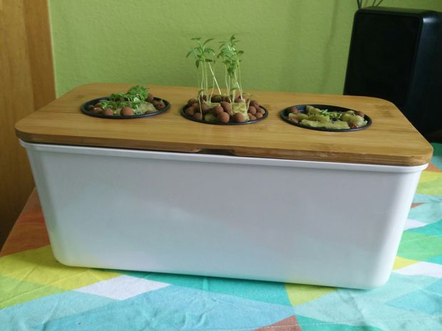 Windowsil hydroponic herb garden is also possible. (via instructables)