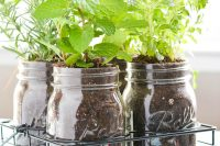 The cool thing about mason jar herb garden that you can easily move it around.
