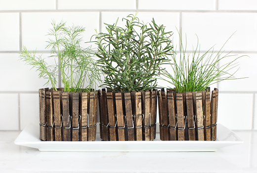 DIY Clothespin planters works well for a window sil herb garden. (via 7thhouseontheleft)