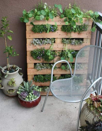 One more awesome example of a space saving vertical herb garden you can DIY from a pallet. (via vtwonen)