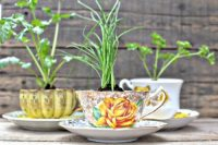 With vintage teacups you can create a beautiful decorative little herb garden.