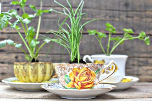 With vintage teacups you can create a beautiful decorative little herb garden. (via shelterness)