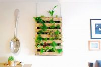 An old pallet could easily become an awesome indoor herb garden that won't occupy much countertop space.