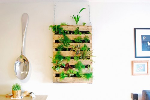 An old pallet could easily become an awesome indoor herb garden that won't occupy much countertop space. (via shelterness)