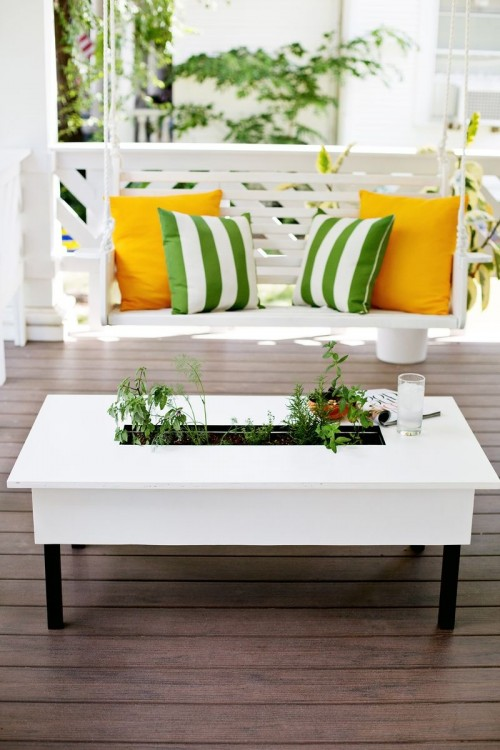 Herb garden could easily be built right in a coffee table. Sounds like a perfect space saving solution, right?