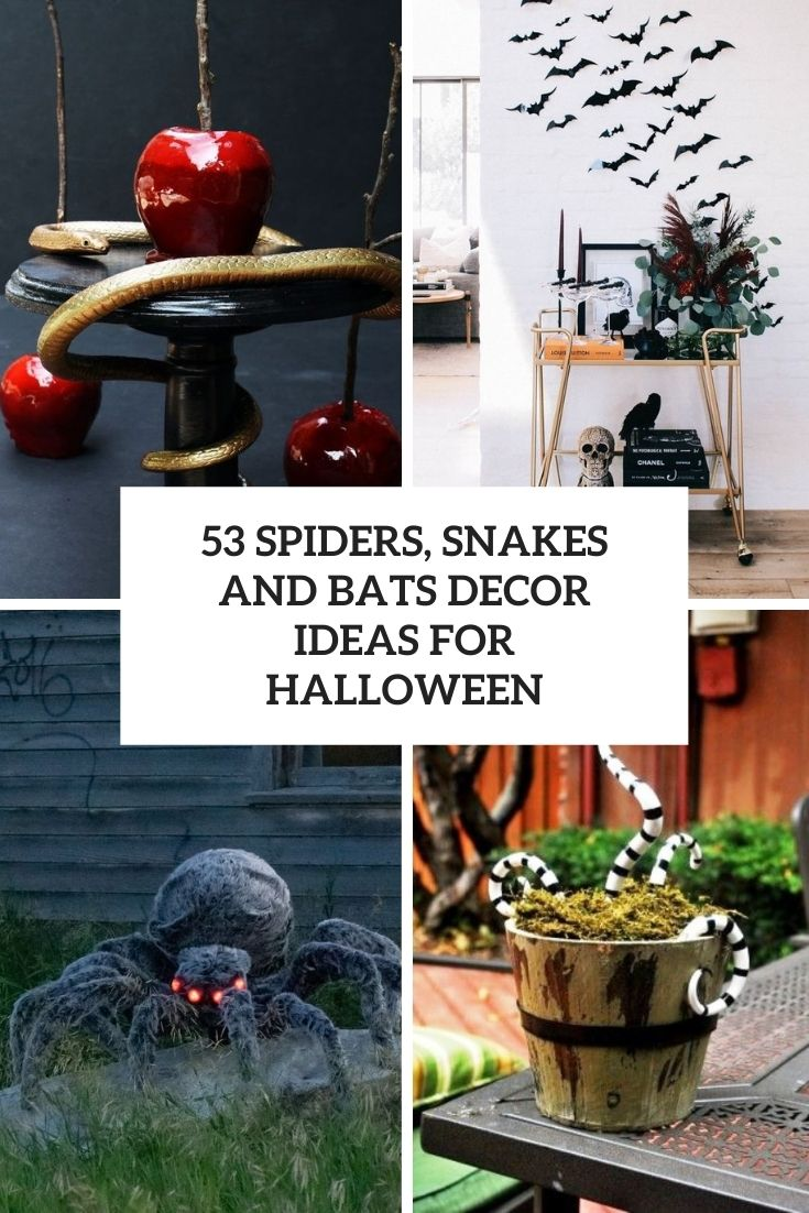 spiders, snakes and bats decor ideas for halloween cover