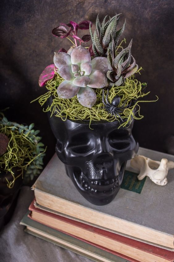a black skull used as a planter for succulents, with yarn and a spider is a bold Halloween decoration with plenty of style