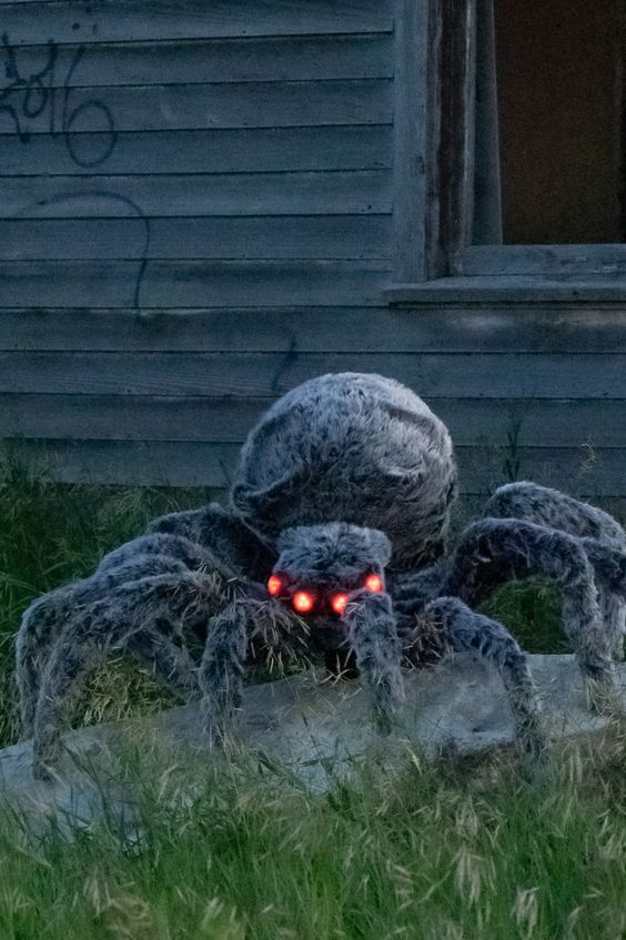 a giant Halloween spider placed in your backyard will scary all the neighbors and you can DIY that