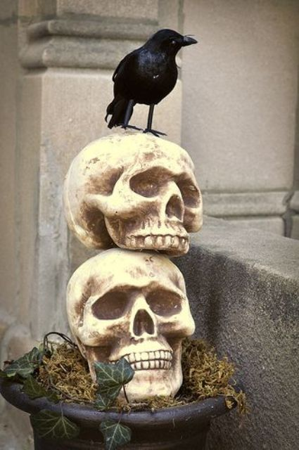 a vintage Halloween decoration of an urn with hay, skulls and a blackbird is a super chic idea for outdoors