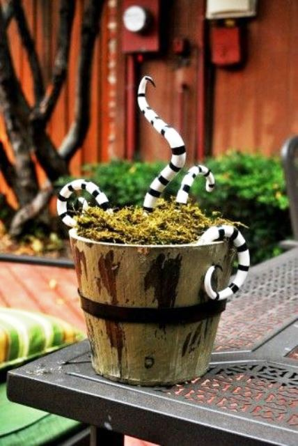 a wooden bucket with moss and black and white snakes from Nightmare Before Christmas