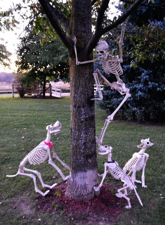 crazy skeleton running ways from skeleton dogs is a hilarious Halloween decoration for outdoors