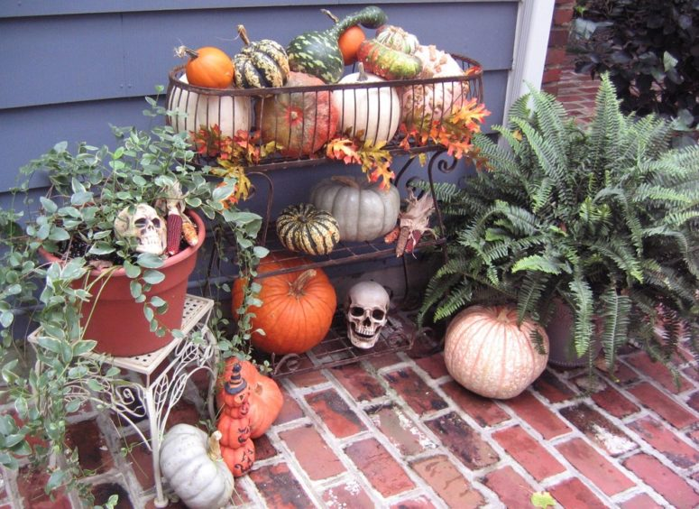 Do You Already Have A Fall Arrangement Of Pumpkins, Gourds, Indian Corn, And