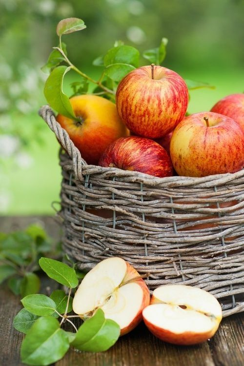 a basket with apples and greenery is a lovely fall decoration in rustic style, make it easily
