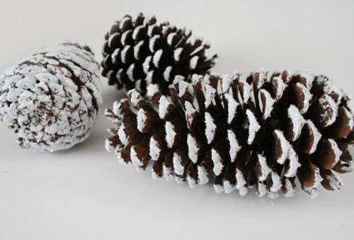 faux snowy pinecones (via shelterness)