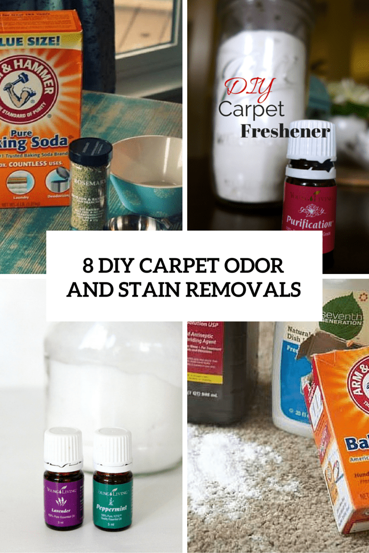 8 Simple And Quick DIY Odor And Stain Carpet Removals