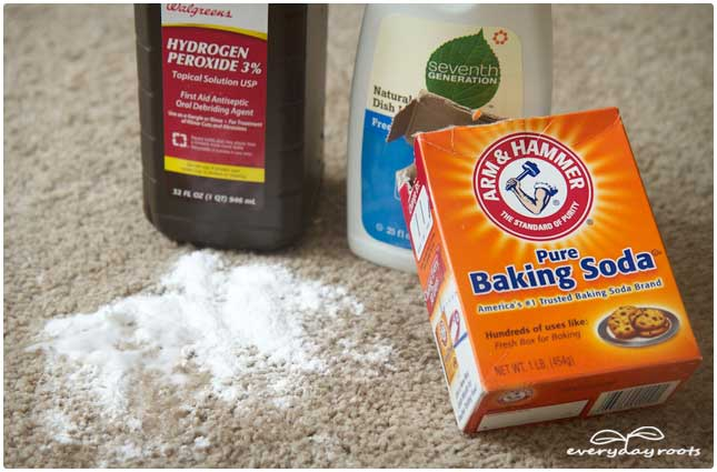 pet stain and odor removal (via everydayroots)