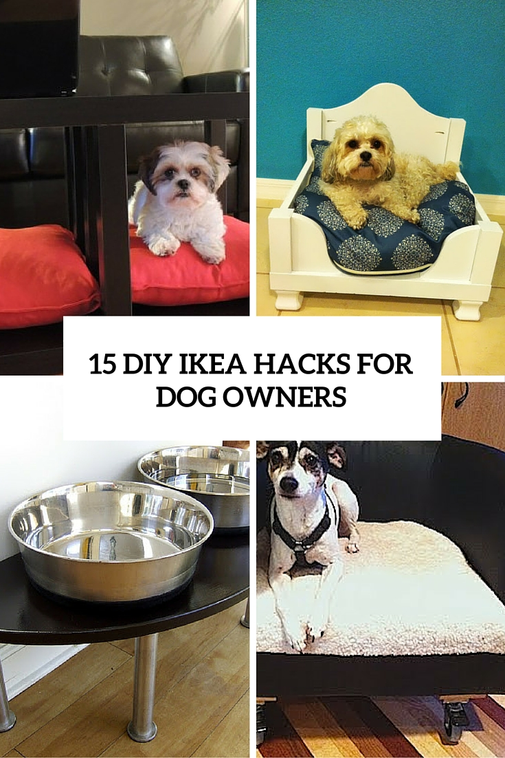 15 Super Smart DIY IKEA Hacks For Dog Owners