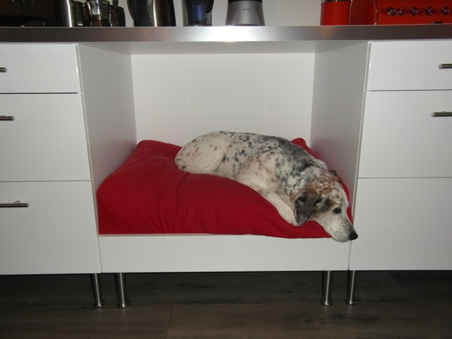 DIY Faktum kitchen dog bed (via ikeahackers)