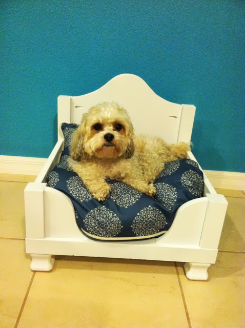 DIY Lack table dog bed hack (via ikeahackers)