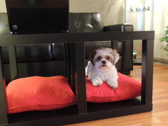DIY Lack table and dog bed (via ikeahackers)