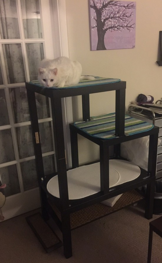 DIY Lack cat tree (via ikeahackers)