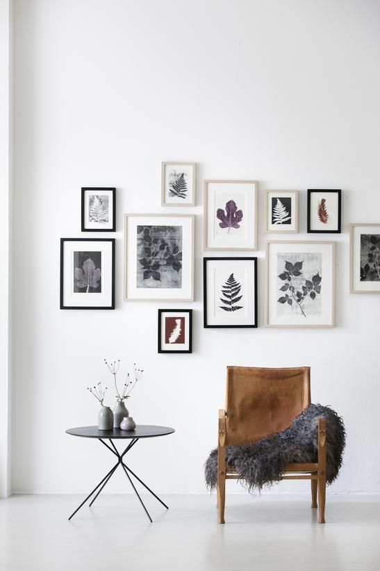 Picture of botanical gallery wall for Picture wall layout