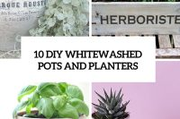 10-diy-whitewashed-pots-and-planters-cover