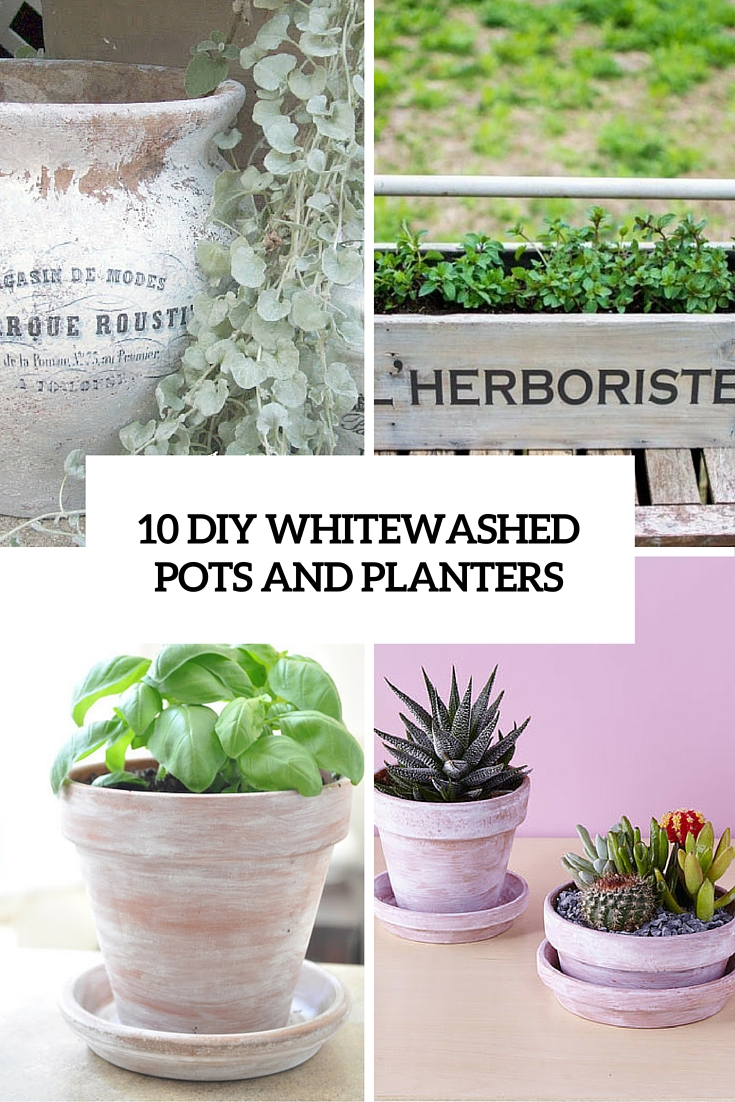 10 diy whitewashed pots and planters cover