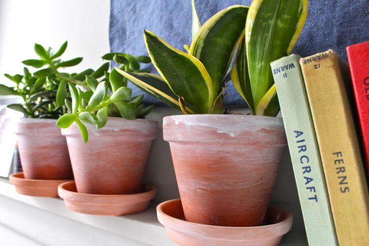 DIY whitewashed terra cotta pots (via fishandbull)